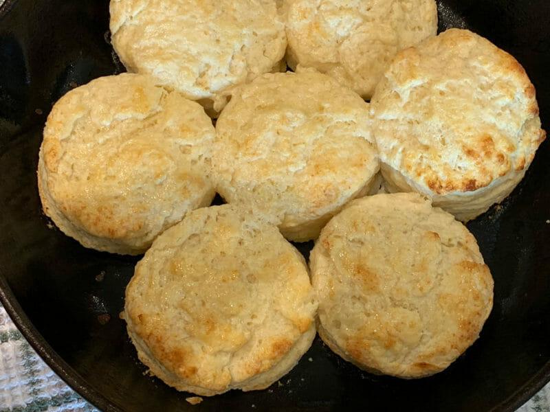 Biscuit Recipe 6
