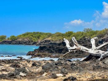 Waialea Beach 3