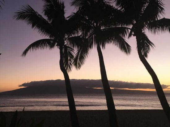 Maui Travel Tips
