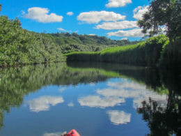 Kayaking in Hanalei 8