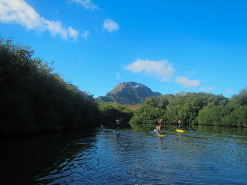 Kauai Stand Up Paddle Board 4