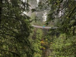 Capilano Suspension Bridge Park 1