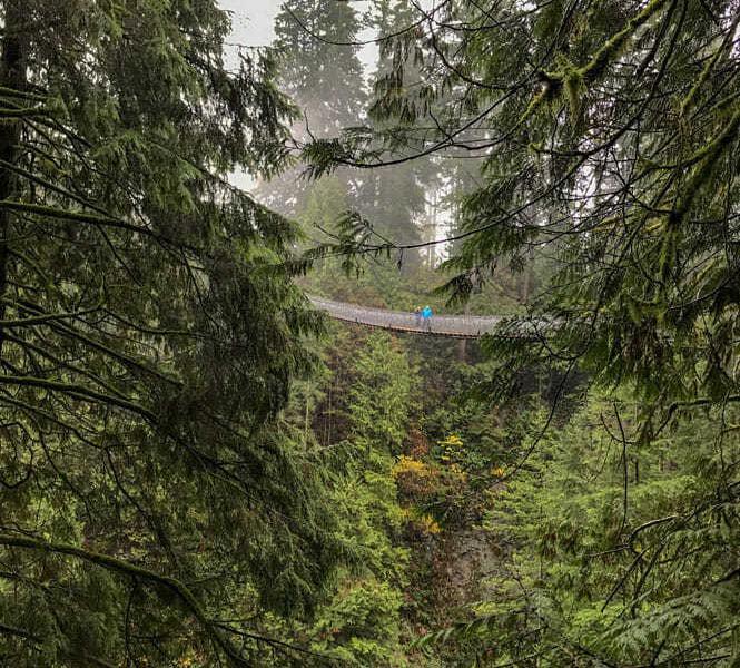 Capilano Suspension Bridge Park 1