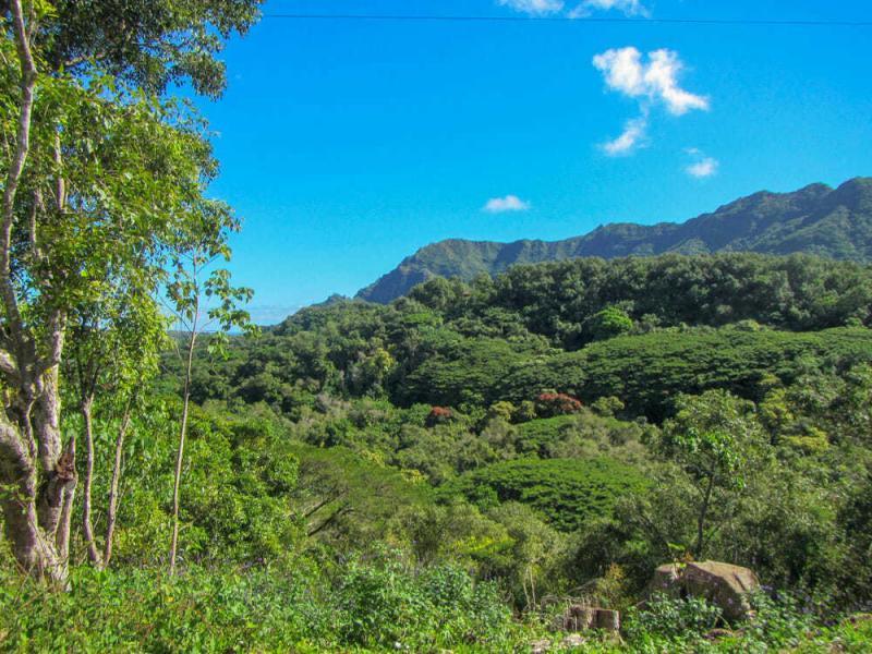 Our Favorite Kauai Adventures 6