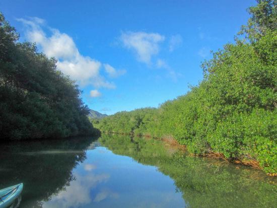 Our Favorite Kauai Adventures