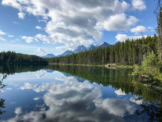 Heber Lake - Banff National Park